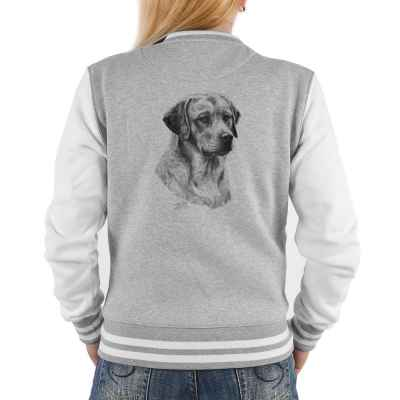 College Jacke Damen: Portrait gelber Labrador